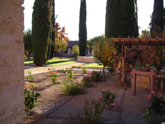The mission gardens include grape vines from the original stock.